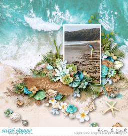Beach_b.jpg