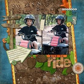 Born-to-Ride1.jpg