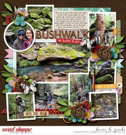 Bush-walk_b.jpg