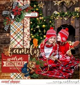 Christmas_SSD_mrsashbaugh2.jpg
