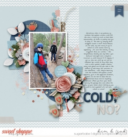 Cold-no_b.jpg