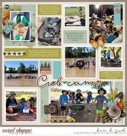 Cub-camp_b1.jpg