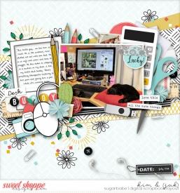 Desk-buddy_b.jpg