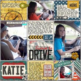 Drive-Me-Crazy1.jpg