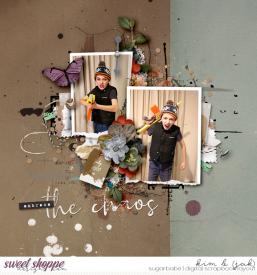 Embrace-the-chaos_b.jpg