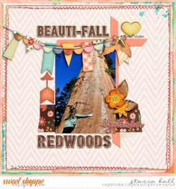 Fall-in-the-Redwoods-wm.jpg