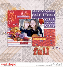 Fall_SSD2.jpg