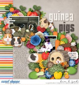 Guinea-pigs_b.jpg