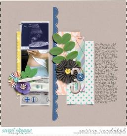 JourneytoMotherhood_SLT13WebWM.jpg