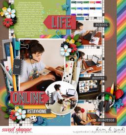 Life-online_b.jpg