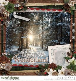 MC-EVergreen-Christmas-_CS-HP-304_.jpg