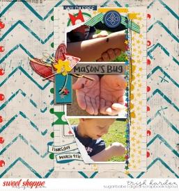 MasonsBugB.jpg