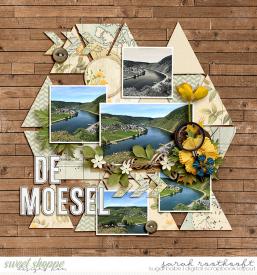 Moesel40web.jpg