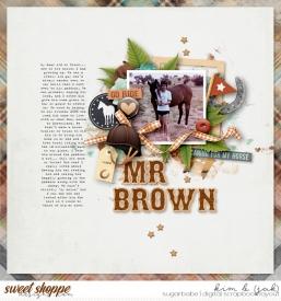 Mr-Brown_b.jpg
