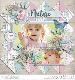 Nature_SSD_mrsashbaugh1.jpg