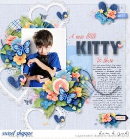 New-kitty-to-love_b.jpg