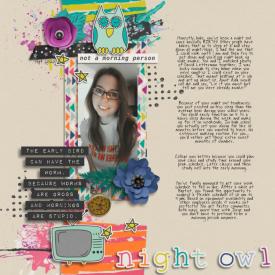 Night_Owl-700.jpg