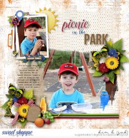 Picnic-in-the-park_b1.jpg