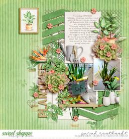 PlantlifeOhsoluckyweb.jpg