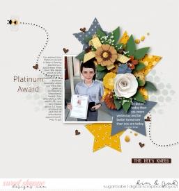 Platinum-award_b.jpg
