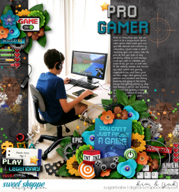 Pro-gamer_b.jpg
