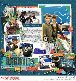 Robotics_b.jpg