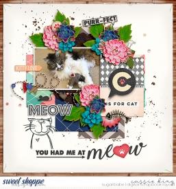 SPD--Life-of-Pets-_CL--June-Bingo_.jpg