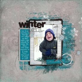 SSD-Winter-Chill600.jpg