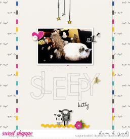 Sleepy-kitty_b.jpg