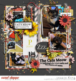 TNP-The-Cat_s-Meow-_BM-Singleton-105_.jpg
