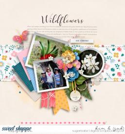 Wildflowers_b1.jpg