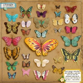 YepBrook-butterfly_samplerWEB.jpg