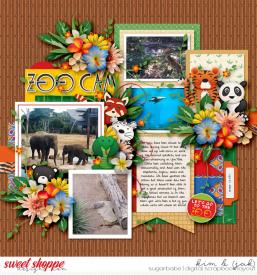 Zoo-cam_b.jpg