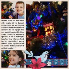 advent2012-Hope-2pgLWEB.jpg