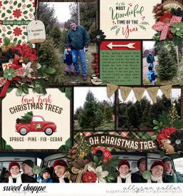 allyanne_ChristmasintheCountry_01_WM.jpg