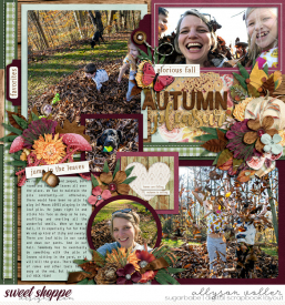 allyanne_Palooza190_AutumnPleasures_02_WM.jpg