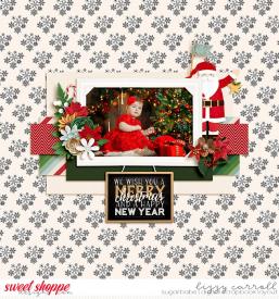 christmas-wm_7001.jpg