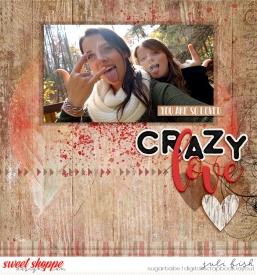 crazy_love_ssd.jpg