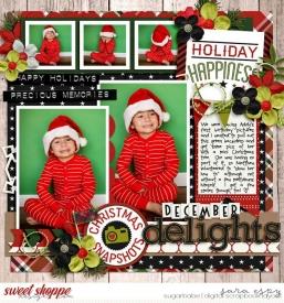 december-delights-wm1.jpg