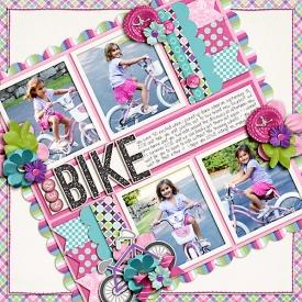 may-2012-new-bike-WEB.jpg