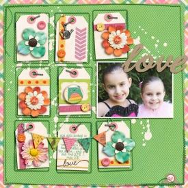 may-2013-love-SSD.jpg