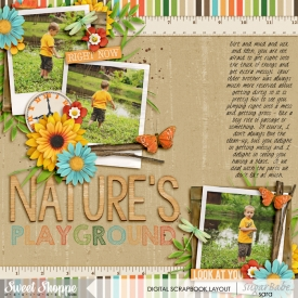 nature_s-playgroundwm.jpg