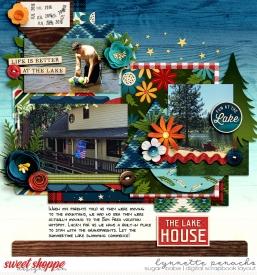 nettio_2016-lakehouse-700-ssd.jpg