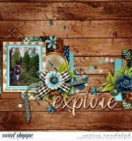 outdoorexplorers-forestWebWM.jpg