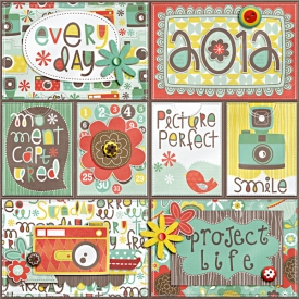 project-life-cover600.jpg