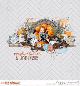 pumpkin-wm_7001.jpg