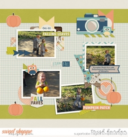 pumpkinpatchB.jpg