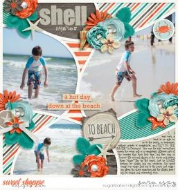 shell-hunter-wm.jpg