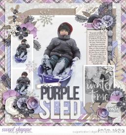 the-purple-sled-wm.jpg