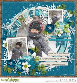 winter-fun-wm.jpg